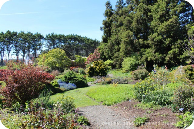 California North Coast Highlights: Mendocino Coast Botanical Gardens