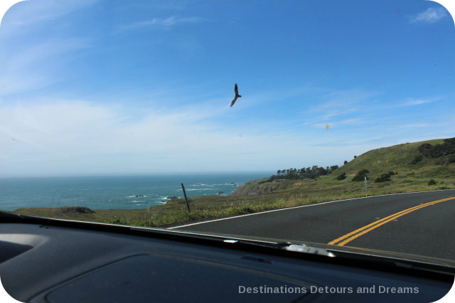 California North Coast Highlights