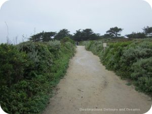 California Pacific Coast: Point Lobos trail