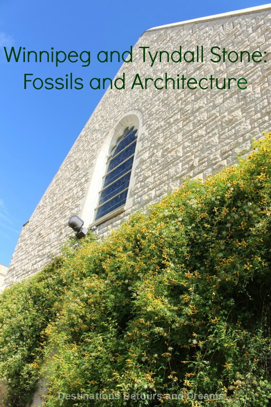 Winnipeg and Tyndall Stone: Fossils and Architecture. Tyndall Stone, full of fossils, is prominent in Winnipeg architecture