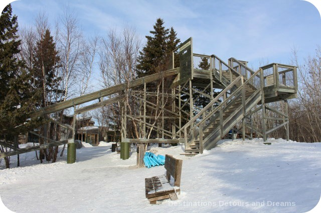 Winnipeg Winter Fun at FortWhyte Alive: Tobogganning
