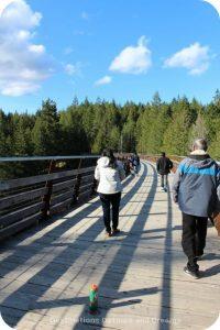 The historic Kinsoh Trestle Bridge on Vancouver Island