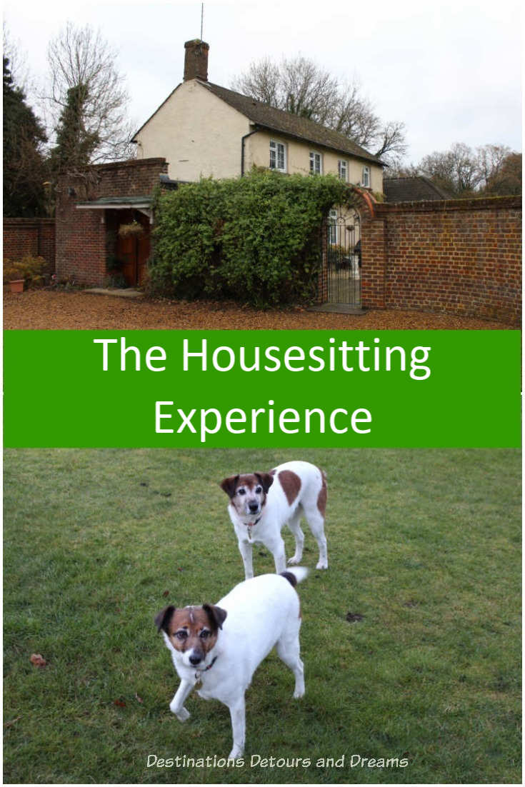 The House Sitting experience - our first house-sit with Trusted Housesitters. #travel #housesit