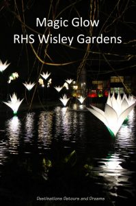 Magical Christmas Glow at RHS Garden Wisley in Surrey, England #garden #England #RHS #Wisley #Surrey