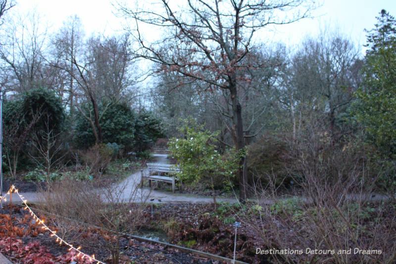 Winter Walk at RHS Garden Wisley in Surrey, England