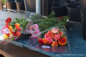 Bouquets of ranunculus ready for sale