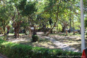 Park area on Isla Cuale: Puerto Vallarta's Island Oasis