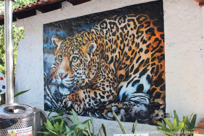 Street art on Isla Cuale: Puerto Vallarta's Island Oasis