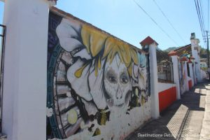 Street art painted on the wall around El Panteón Cemetery in Puerto Vallarta
