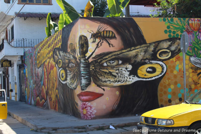 Street art by Misael Lopez and Joey Real wrapping the wall beside the Hive Studio in Puerto Vallarta echoes the theme of the Hive with a swarm of bees