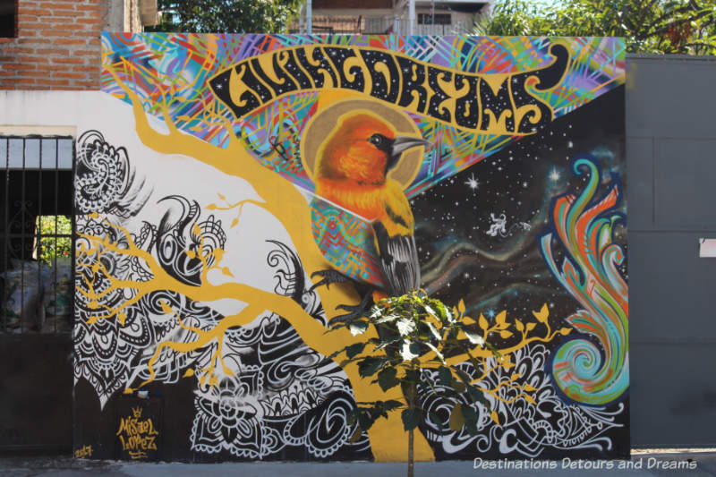Living Dreams street mural by Misael in Puero Vallarta features a bird in the centre