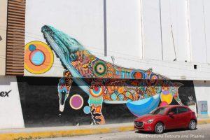 Colourful whale street art in Puerto Vallarta