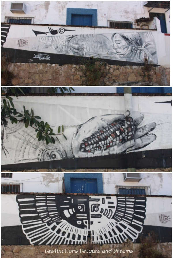 Puerto Vallarta street art: three black and white indigenous-themed pieces: an elder, a hand holding a cob of corn and a half-circular design