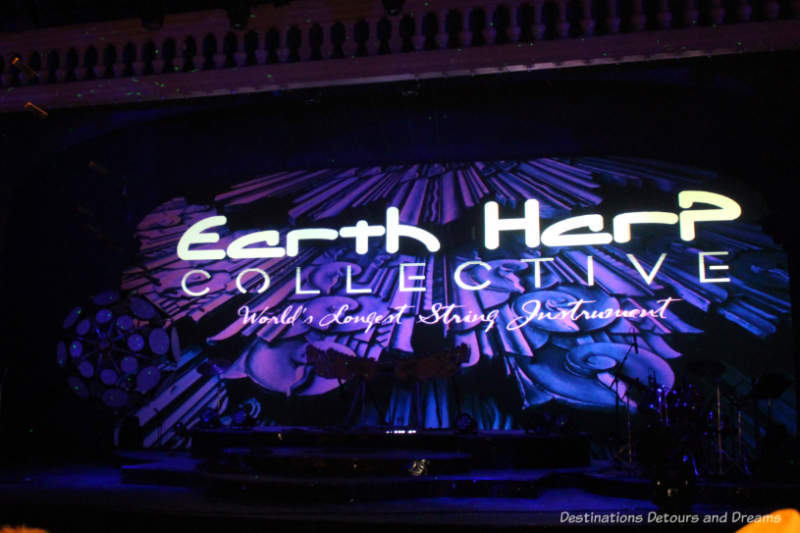 The Amazing Earth Harp Collective stage