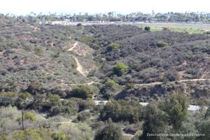 Florida Canyon Native Plant Preserve in San Diego