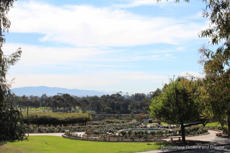 Rose garden overlooking canyon in Balboa Park