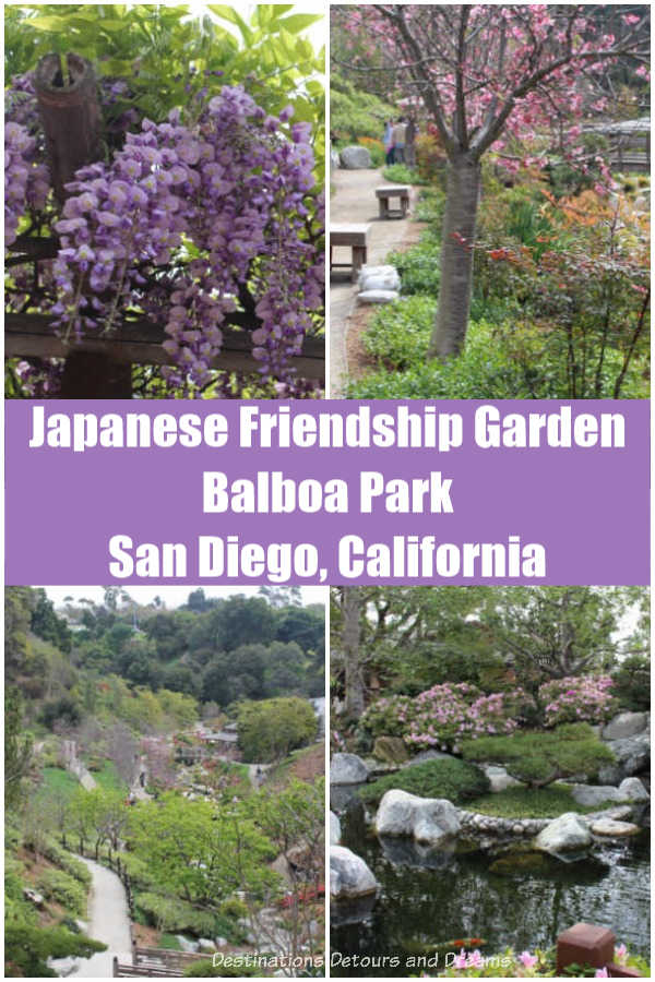 Japanese Friendship Garden is one of several gardens in Balboa Park in San Diego, California for visitors to enjoy #California #SanDiego #garden #park