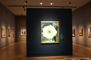 "Gallery at Crystal Bridges Museum of American Art feature ""Jimson Weed/White Flower No. 1"" by Georgia O'Keefe on a centre wall"