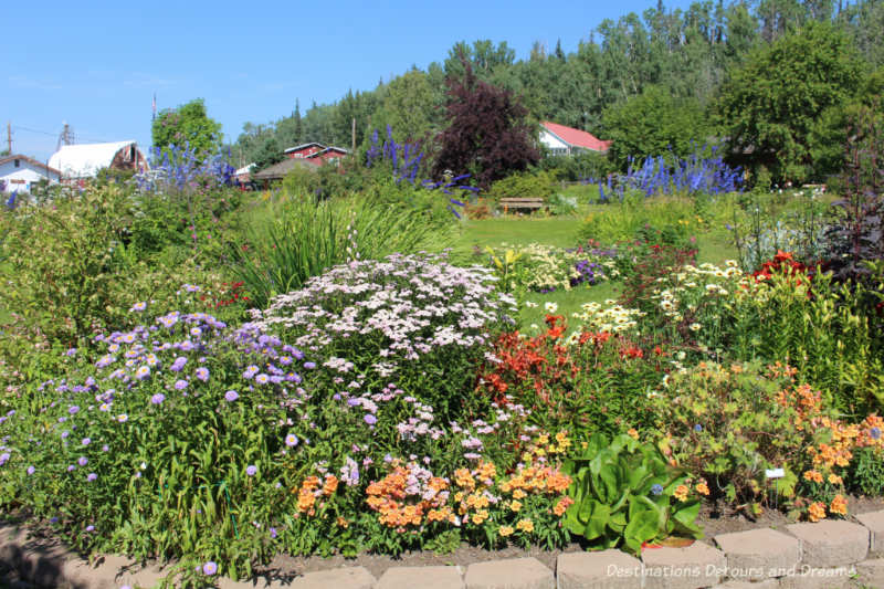 Part of the gardens at Georgeson Botanical Garden in Fairbanks, Alaska