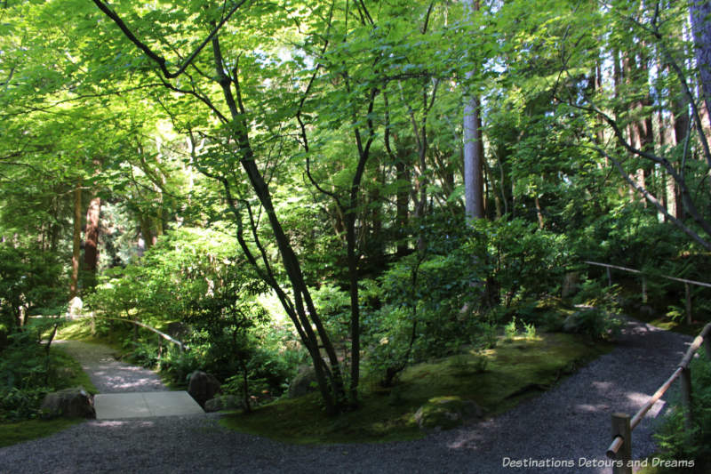 Forest walk at Nitobe Memorial Garden in Vancouver, BC