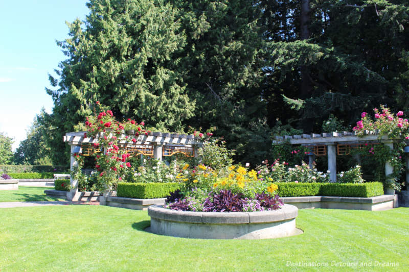 Bowers of roses at the UBC Rose Garden in Vancouver