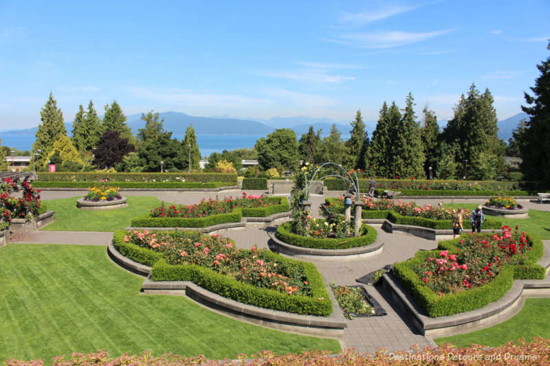 Panoramic UBC Rose Garden view