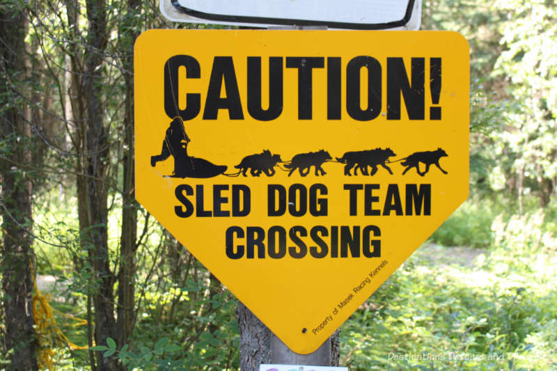 Sled dog crossing sign near Chena Hot Springs Kennel