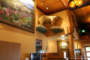 Stuffed bear on display in lobby of Pike's Waterfront Lodge in Fairbanks Alaska