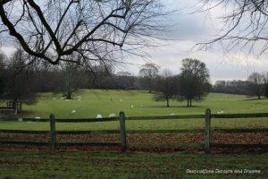 Countryside near Chawton, Hampshire