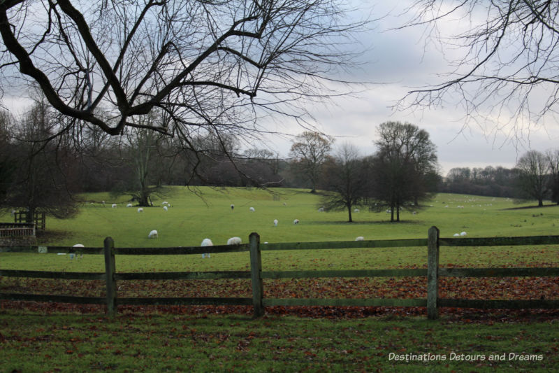 Countryside near Chawton, Hampshire