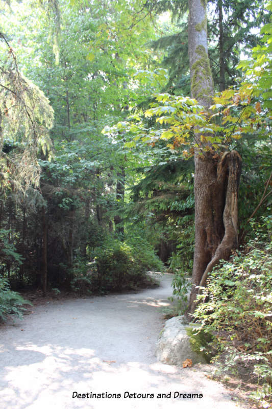 Path to outdoor exhibits at University of Anthropology