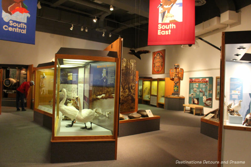 Alaska Gallery at Museum of the North in Fairbanks, Alaska