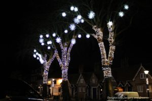 Trees lit up in the town of Farnham, Surrey, England