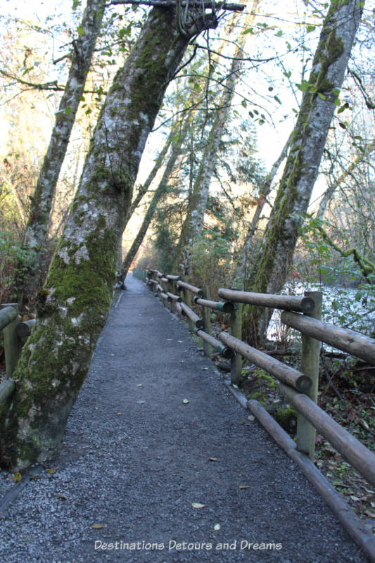Riverside trail at Goldstream Provincial Park on Vancouver Island