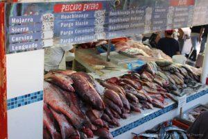 Fish Market, Puerto Vallarta, Mexico