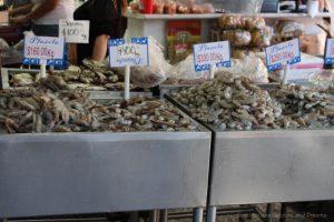 Shrimp at the fish market, Puerto Vallarta, Mexico