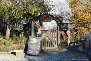 Salt Spring Vineyards, Salt Spring Island, British Columbia, Canada