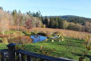 Picnic area at Salt Spring Vineyards, Salt Spring Island, Canada