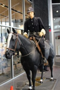 Horseback police patrol display at Winnipeg Police Museum