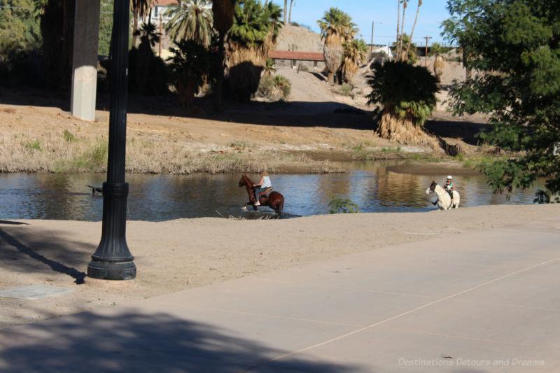 Colorado River in Yuma, Arizona