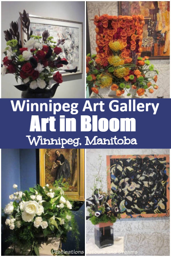 Every second spring, the Art in Bloom exhibit at the Winnipeg Art Gallery in Winnipeg, Manitoba features floral arrangements designed to complement works of art. #Winnipeg #Manitoba #art