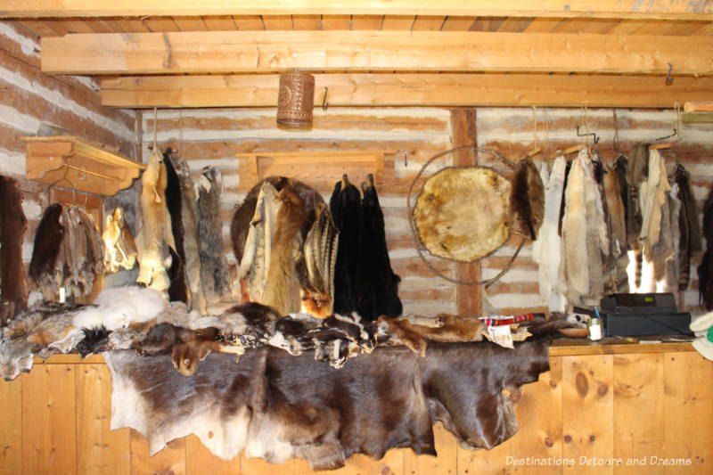 Furs hanging and on the counter in the store at Fort Gibraltar