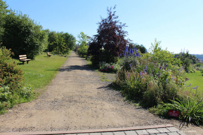 Path at entrance to Georgeson Botanical Garden in Fairbanks, Alaska