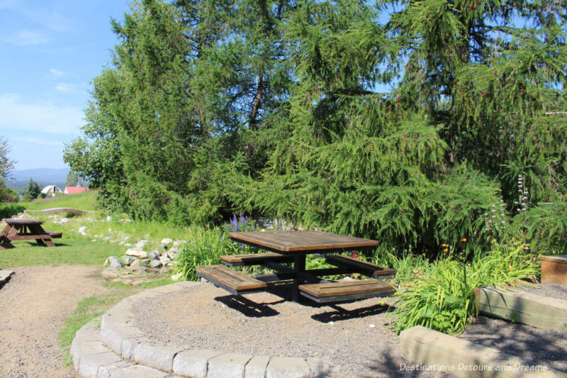 Picnic benches in Georgeson Botanical Garden
