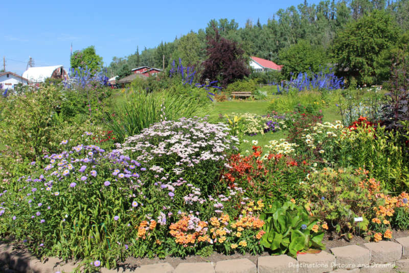 A collection of blooming flowers at the Georgeson Botanical Garden in Fairbanks, Alaska