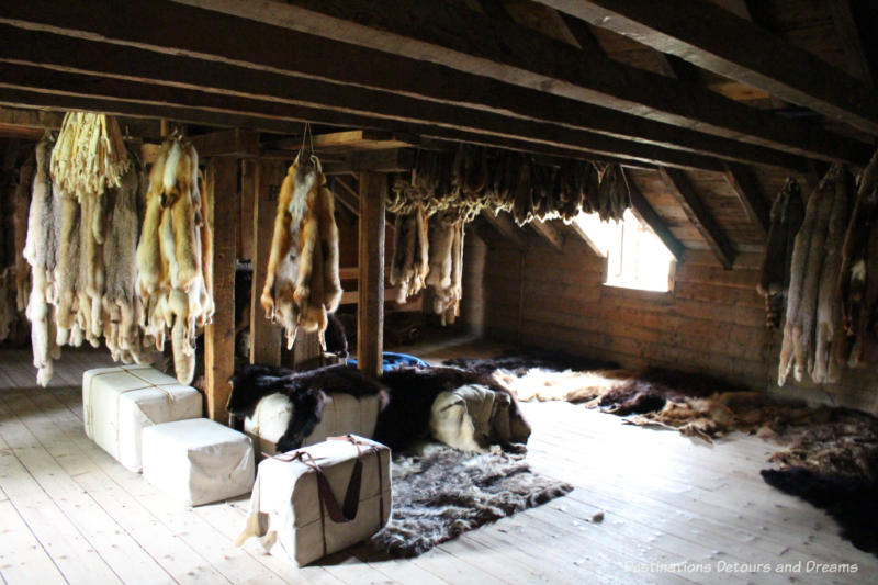 Fur pelts hanging from rafters in the fur loft of Lower Fort Garry