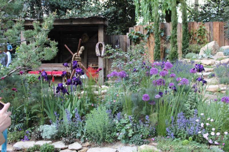 Purple, blue, and green plantings with a rustic shaded seating are behind them form the Donkeys Matter Artisan Garden at the 2019 Chelsea Flower Show