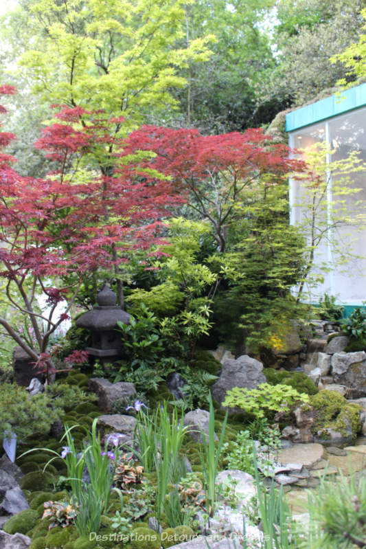 Japanese-style garden at the Chelsea 2019 Flower Shiow