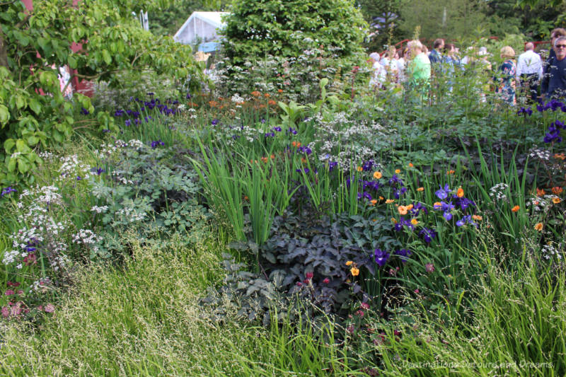 Flowing meadow plants of the 2019 Chelsea Flower Show RHS Bridgewater Garden