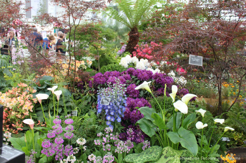 Mixture of colourful flowers inside the Grate Pavilion at the Chelsea Flower Flower Show
